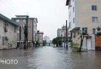 اطلاعیه سازمان هواشناسی درباره رگبار باران در برخی مناطق کشور