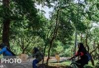 تدوین سند جامع دوچرخهسواری برای تهرانیها