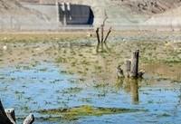 کاهش ۱۴ درصدی میزان ذخایر سدهای ایران   ۶۹ درصد مخزن سدهای تهران خالی است