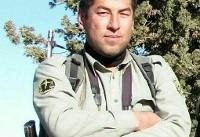 تلاش برای دستگیری عاملان شهادت محیط بان پارک ملی گلستان