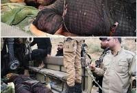 عکس منتشر شده از طراح اصلی حادثه اهواز (۱۸+)