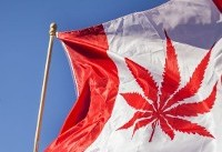 Canada legalizes marijuana for recreational use