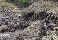خسارت ۹۰۰ میلیارد تومانی حوادث طبیعی به آذربایجان غربی در ۶ ماه