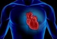 آمادگی قلبی و عروقی موجب طول عمر بیشتر میشود
