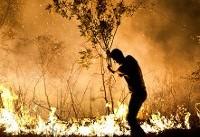 حریق و سیل در نقاط پرخطر کشور قابل پیشبینی است/ کاهش ۵۰ درصدی حریق در منابع طبیعی