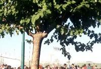 حضور مأموران زن در ورزشگاه آزادی/ چادرها جمع شد