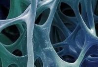 ماشینی که دیاکسید کربن میگیرد و نانوذرات استخوانی میسازد!