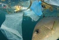 روزانه چقدر پلاستیک می&#۸۲۰۴;خوریم؟