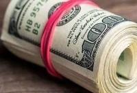 طرح نمایندگان برای تخصیص ارز دولتی به کالاهای اساسی