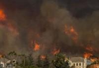شمار تلفات آتشسوزی مرگبار کالیفرنیا به ۳۱ نفر رسید/۲۲۸ نفر ناپدید شدند+تصاویر