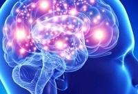 درباره بهبود عملکرد مغز و افزایش سطح پردازش سلول های آن!