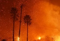 Deadliest wildfires in the United States since the 1990s