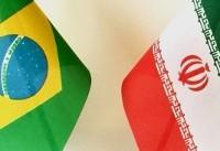 آمادگی برزیل برای توسعه روابط اقتصادی و زیست محیطی با ایران