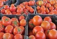 کشف قاچاق ۲۲ تن گوجه و ۲ هزار لیتر سوخت