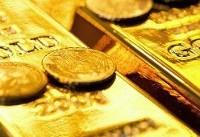 طلای جهانی گرانتر شد