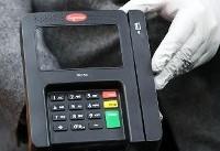 شناسایی و دستگیری فروشندگان دستگاه کپی کارت بانکی