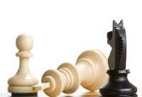 حضور هشت شطرنجباز داخلی و خارجی در جام ستارگان