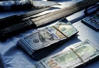 دستگیری ۳۰ نفر از دلالان ارزی در استان البرز/ کشف بیش از ۲۴ هزار دلار و ۲۰ میلیون وجه نقد