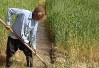 توصیههای ۵ روزه هواشناسی کشاورزی