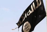 ارتش سوریه ۱۹ کودک و زن در بند داعش را آزاد کرد