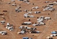 آوارگان سوری، سپر انسانی تروریست های