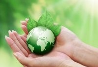 ۱۰ راهکار ساده برای حفاظت از محیط زیست