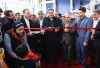 یازدهمین جشنواره ارگانیک تهران» با حضور شهردار و اعضای شورای شهر تهران افتتاح شد