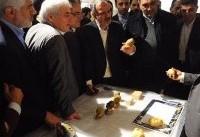 حناچی: قدمت تمدن در تهران به هشت هزار سال میرسد