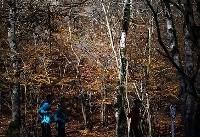 طبیعت پاییزی النگدره+عکس
