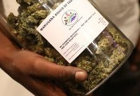 In an African first, a cannabis expo...without cannabis