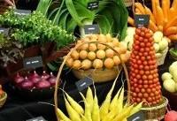 ضرورت افزایش تولید محصولات ارگانیک