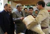 پیشنهاد شهردار تهران به دولت