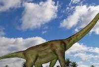 چوپانی در آفریقای جنوبی گورستان دایناسورها را کشف کرد