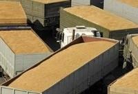 قاچاق خاک ایران به بهانه صادرات گُل!