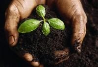 خاکهای گلستان فقیر از مواد آلی