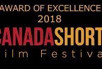 جایزه عالی جشنواره کانادایی به «چشم انداز خالی» رسید