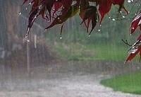 افزایش ۲۰ درصدی بارش در کشور/ بارندگیها در ۷ استان منفی است