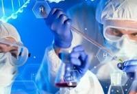 تولید ۲ داروی گیاهی درمان آسم در مرکز تحقیقات التهاب نوروژنیک مشهد