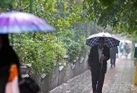 بارش های پراکنده در برخی نقاط کشور/وضعیت جوی پایتخت