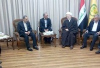 ولایتی: روابط راهبردی عراق و ایران برای آینده منطقه تعیین کننده است