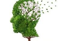 بیماران مبتلا به آلزایمر با ماساژ سر و صورت آرام می&#۸۲۰۴;شوند