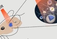 پی بردن به حیات آغازین با بررسی «سیارکها»