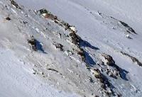 پیکر ۷ جانباخته سانحه هواپیما در حال انتقال به منطقه سیسخت است