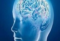 متخصصان مغز و اعصاب وارد مرحله درمان حاد بیماران نمی شوند