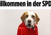 جنجال یک سگ در حزب سوسیال دموکرات آلمان