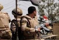 کشته شدن هفت نظامی مصری و ۷۱ تروریست
