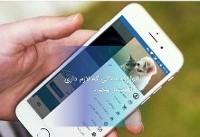 پتچی؛ اولین اپلیکیشن نگهداری حیوانات خانگی