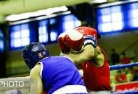 دعوت ۱۲ بوکسور به مرحله آخر اردوهای تیم جوانان