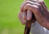 راهکارهای سفری ایمن برای سالمندان