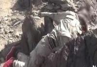 کشته و زخمی شدن شماری مزدور سعودی در تعز